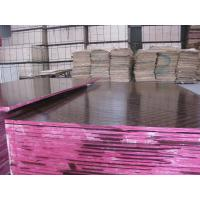 Wholesale Water Resistant Poplar Concrete Plywood / 18mm Phenolic Laminated Plywood Sheets from china suppliers