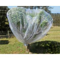Wholesale Fruit Tree Net, 20-50mesh,0.5-6.0m,green and white,protect the trees from china suppliers