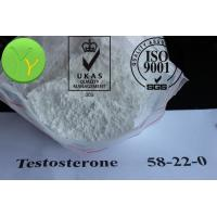 how to use trenbolone ace