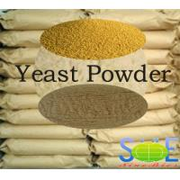 Wholesale Powdered Yeast Animal Feed 4.5-6.5 pH For Supplying Protein SYE-PO55 from china suppliers