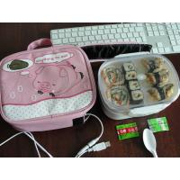 Wholesale usb lunch box,  warmer lunch bag, USB Heating Lunch box, usb cooler bag from china suppliers