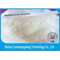 Wholesale CAS 2363-59-9 White Effective Boldenone Steroid , Boldenone Acetate For Muscle Building from china suppliers