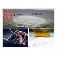 Wholesale Muscle Building Pharm Grade  Anabolic Steroid Powder Test Iso/Testosterone Isocaproate CAS 15262-86-9 from china suppliers