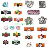 Quality Rhinestone Slider Charms,Enamel Charms,PET Charms DIY Charms for sale