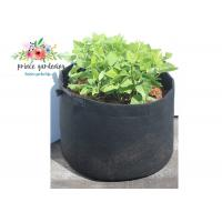 Wholesale Classic Line Tequila Sunrise Garden Plant Accessories / Gardening Bags Sacks Black 25lb from china suppliers