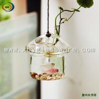 Wholesale Glass fish tank hanging from china suppliers