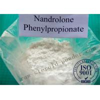 Wholesale Testosterone Phenylpropionate Powder For Men Musclebuilding , CAS No: 1255-49-8 from china suppliers