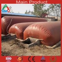 Wholesale Low cost and Large size biogas system from china suppliers