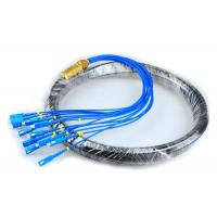 Wholesale CATV Network Optical Fiber Pigtail 12 Core Fiber Outdoor SC Pigtail Waterproof from china suppliers