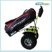 Wholesale 2 Wheel Self Balancing Smart Electric Scooter with Golf Bag Carrier from china suppliers