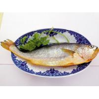 Buy cheap Good price frozen fresh yellow croaker from China for African macketing. from wholesalers