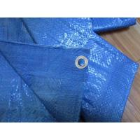Wholesale p.e.tarpaulin sheet and roll,60gsm 90gsm 6*6 7*7mesh ,\ from china suppliers