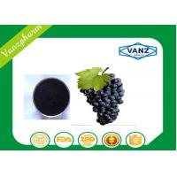 Wholesale Pure Herbal Extracts HPLC  95% OPC grape seed extract for Antioxidant from china suppliers