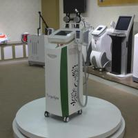 Wholesale Effective Fat Freezing Lose Weight Cryolipolysis Device from china suppliers