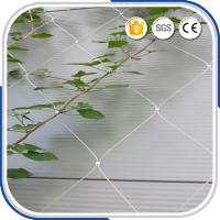 Wholesale High Grade Flexible AISI316 2.0MM Wire Rope Ferruled Mesh Green Facade Plant Climbing Net from china suppliers