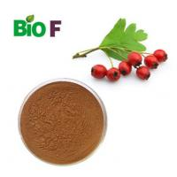 China Functional Fruit Extract Powder Hawthorn Extract Powder 40% Flavones on sale