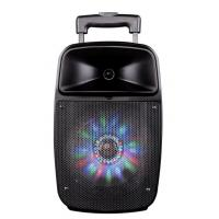 Buy cheap 12 Inch Bluetooth Function Rechargeable Portable Trolley Speakers With Led Lights from wholesalers