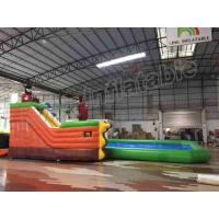 Quality Amusement Park Slide Durable Inflatable Water Fun Special For Kids / Adults for sale