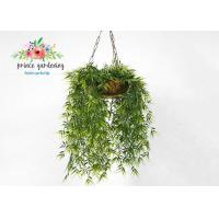 Wholesale Customized Steel Wire Hanging Flower Baskets , Hanging Plant Pots from china suppliers