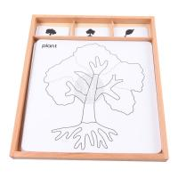 Wholesale wooden montessori educational toys in china - Botany Puzzle Activity Set from china suppliers