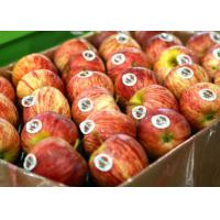 Wholesale Food Fruit Custom Printed Adhesive Labels Coated Paper Removable Glue from china suppliers