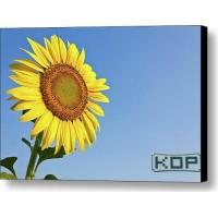 Wholesale White Canvas Polyester Glossy Digital Printing Canvas Water Resistant from china suppliers