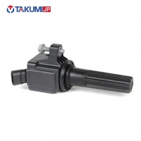 Quality 22448-6N011 Car Ignition Coil for sale