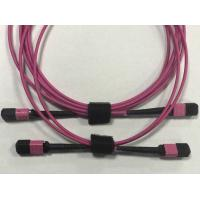 Wholesale Purple Optical Network Components , MPO - MPO fibre optic patch cord Multimode from china suppliers