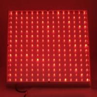 Wholesale Red / White / Yellow  LED Plant Growing Lights 120w / 300 watt / 90w with low energy from china suppliers