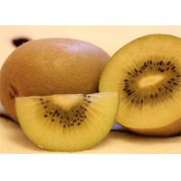 Quality Peeled Tropical Canned Fruit Canned Kiwi Fruit Sliced Canned Yangtao in Tin for sale