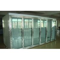 Wholesale Back Side Loading Glass Door Freezer Large Capaciy Remote System Copeland Compressor from china suppliers
