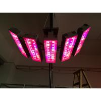 Wholesale Latest XL spectrum light Adjust plant light LED GrowLight for foliage plants hanging plant light cultivation, horticultu from china suppliers