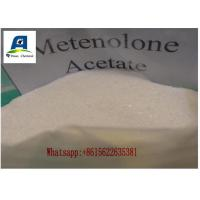 Wholesale Raw Muscle Building Steroids Methenolone Acetate Powder For Cycle Cutting from china suppliers