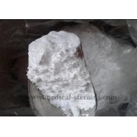 Wholesale Energy Improving Powder Pramiracetam CAS 68497-62-1 for Boosting Brain from china suppliers