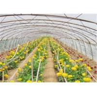 Wholesale Mulch Jumbo Rolling Plastic Greenhouse Film With High Impact Resistance from china suppliers