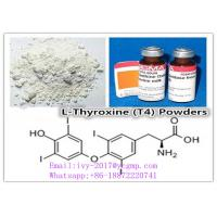 Wholesale T4 / L - Thyroxine CAS 51-48-9 Quasi Thyroid Hormone Drugs White Crystalline Powder from china suppliers