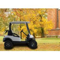 Wholesale 2 Seater Golf Buggy Golf E Car from china suppliers