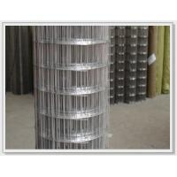Wholesale Stainless steel welded mesh from china suppliers