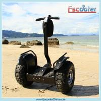 Wholesale Human transporter electric chariot scooter e balance scooter from china suppliers