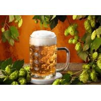 Wholesale natural China humulus lupulus beer hops dried flower pellets export from china suppliers