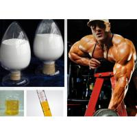 Wholesale Injectable Homebrew Testosterone Steroid Acetate CAS 1045-69-8 C21H30O3 Test Ace from china suppliers
