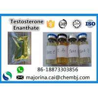 Wholesale Testosterone Enanthate / Test E Injectable Muscle Building Steroid White Crystalline Powder from china suppliers