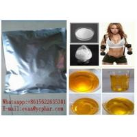 Wholesale Positive Fat Loss Hormones , Pure L Epinephrine Hydrochloride Powder 55-31-2 from china suppliers