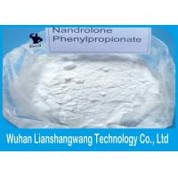 Wholesale CAS 62-90-8 Nandrolone Phenylpropionate / NPP White Powder Steroid for Muscle Building from china suppliers