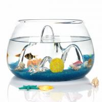 Buy cheap Beautiful GLASS fish bowl glass plant terrarium from wholesalers