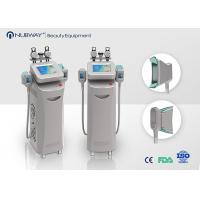 Wholesale Two RF Handles Coolsculpting Machine Vertical For Body Shaping from china suppliers