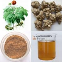 Quality Panax Notoginseng Root Extract for sale