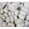 Buy cheap Fresh Pure White Garlic 3.5-7.0cm from wholesalers