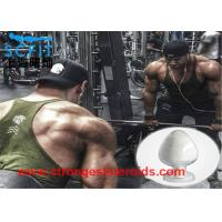 Quality Healthy Nature Legal Anabolic Steroids Powder Dehydroepiandrosterone For Man Muscle Growth for sale