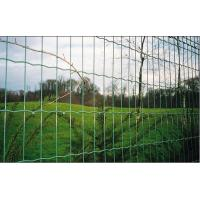 Wholesale Vinyl Coated Garden Border Fence , electric poultry netting from china suppliers